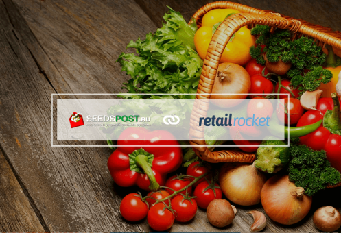Trigger-based emails Growth Hacking for Seedspost increased conversion by 120%